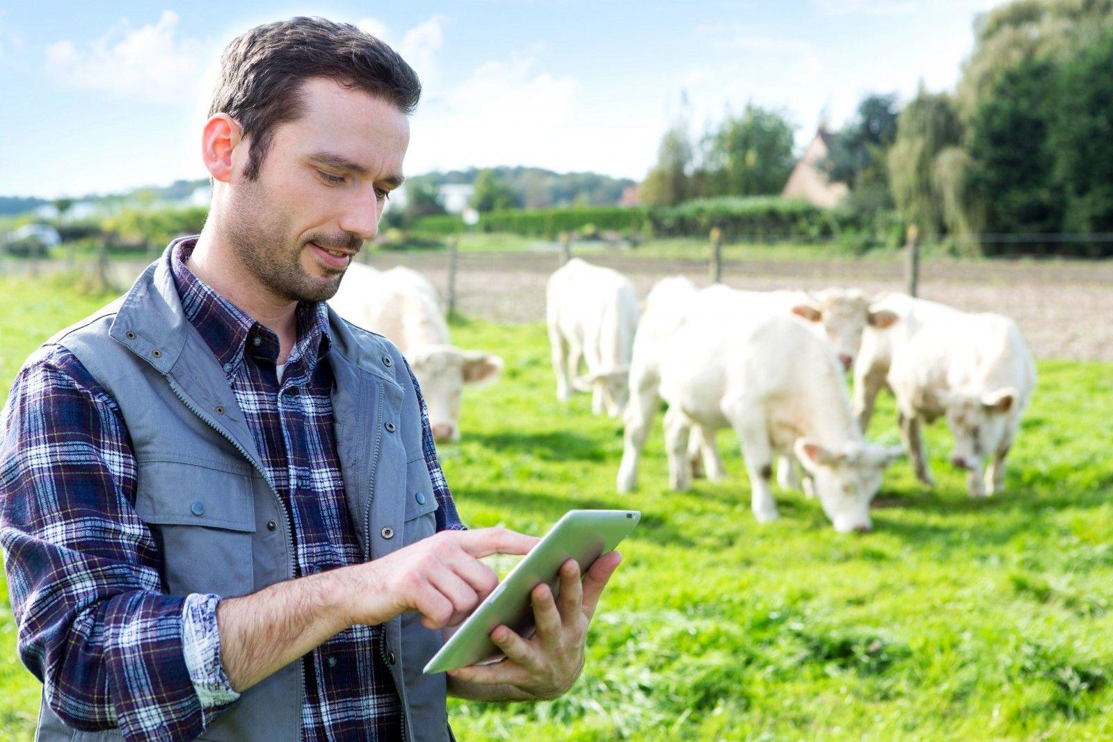 Курским фермерам помогут в Центре компетенций в сфере сельскохозяйственной кооперации